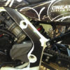 Carbon Fiber Frame Guards